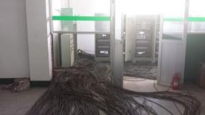东北比特币矿场供电电缆